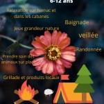 Affiche mini camp ALSH